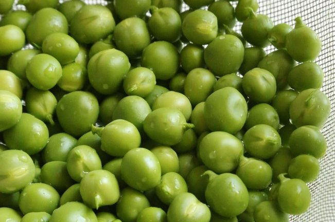 peas are excellent for homemade duck feed
