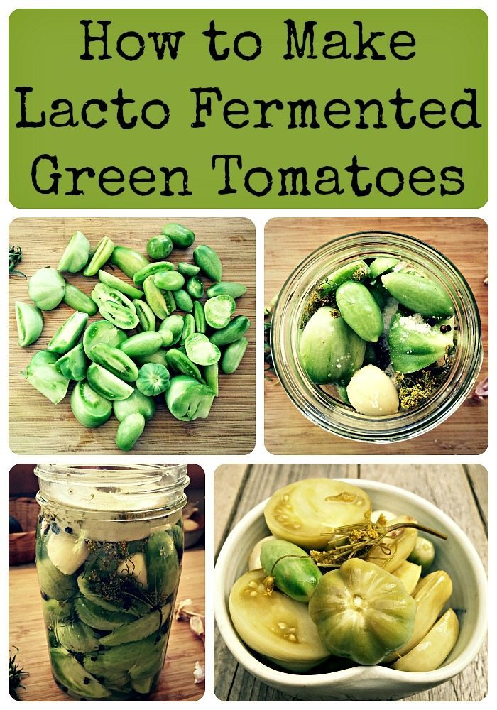 tomatoes fermented tomato recipes recipe easy collage fermenting ferment tonight fresh ll want really