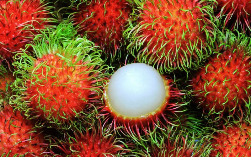rambutans winter fruits
