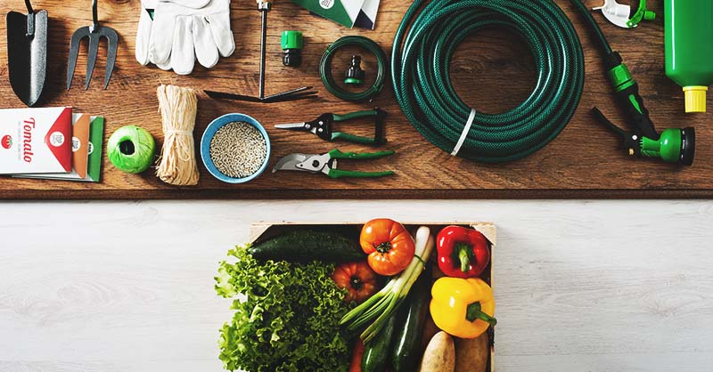 706fb5b887 38 Useful and Budget-Friendly Gifts for Gardeners in Your Life