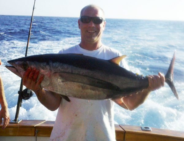 albacore tuna