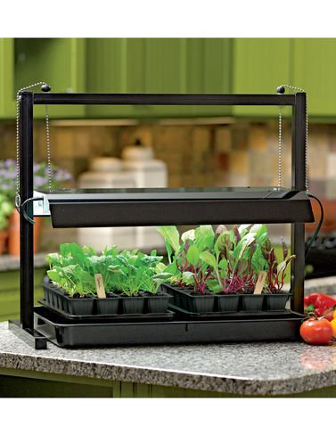 Gifts For Gardeners, What To Get Someone Who Loves Gardening