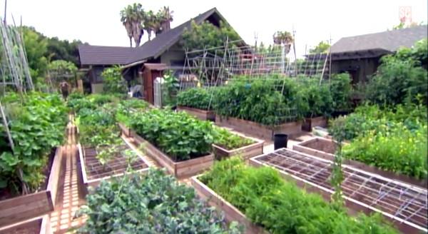 micro-farming