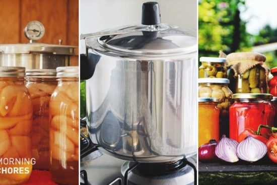 How to a Pressure Canner Correctly to Preserve Almost Any Food