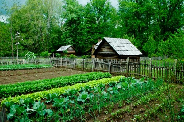 what self sufficient living is about and 8 tips on how to achieve itvia newsprepper
