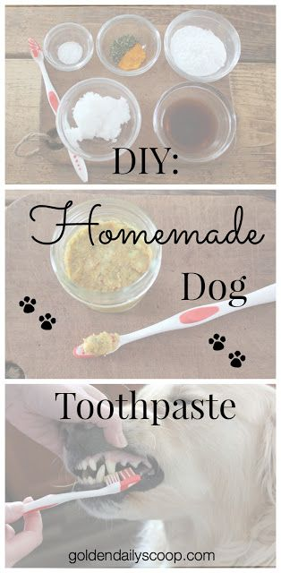 You probably thought I was just going to include DIY toothpaste for your human family members. I can't forget our four legged family members, though.