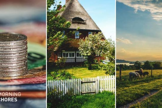 5 Questions to Ask Yourself When Purchasing Your First Homestead