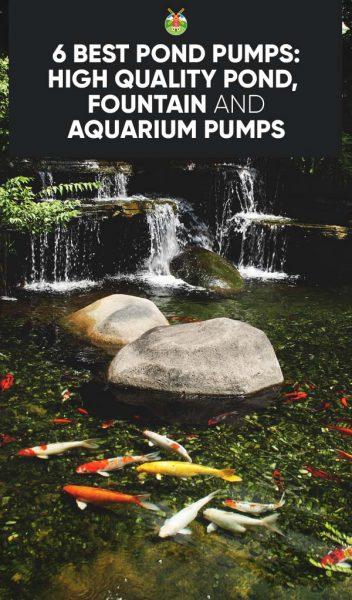 6 Best Pond Pumps: High Quality Pond, Fountain and Aquarium
