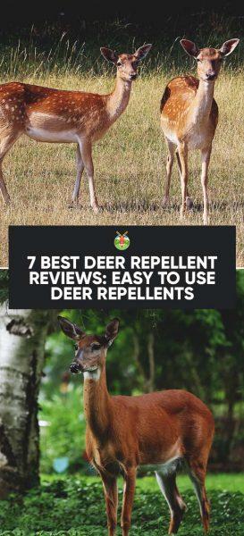 7 Best Deer Repellent Reviews for Deer Resistant Garden