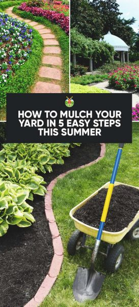 How To Mulch Your Yard In 5 Easy Steps