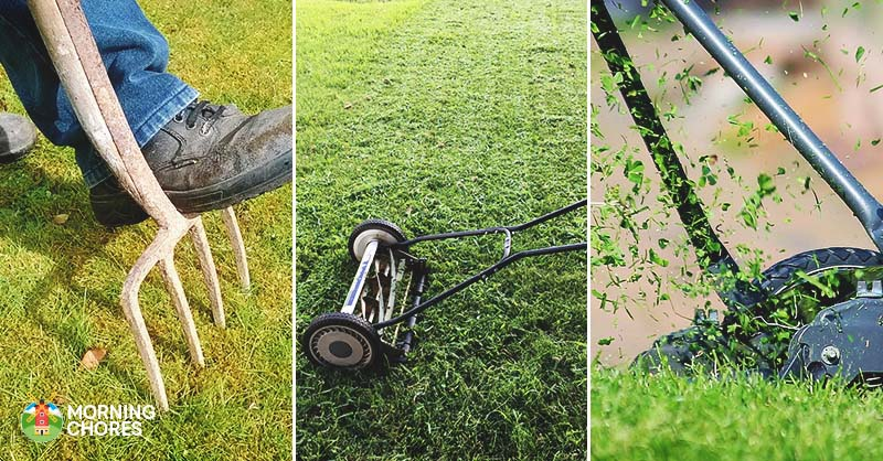 Lawn Aerator For Sale >> 6 Best Lawn Aerator Reviews How To Create A Beautiful Healthy Lawn