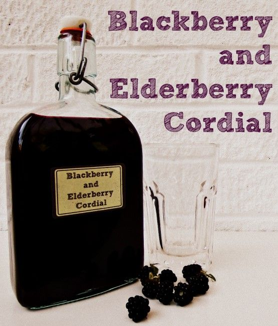 blackberry recipes for cordial