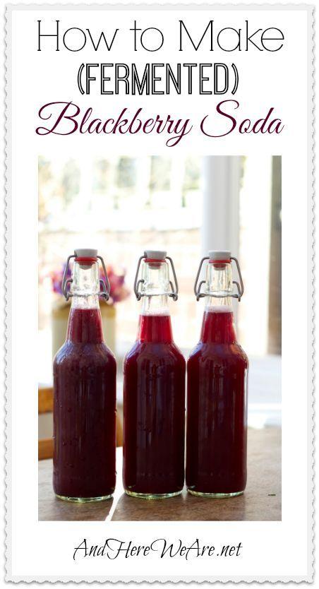 blackberry recipes for soda
