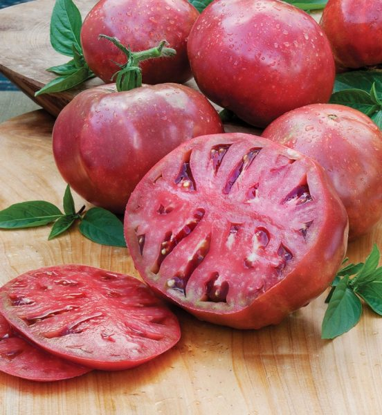 cherokee-purple-heirloom-tomato
