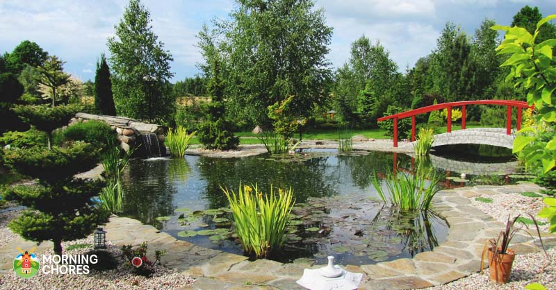 15 reasons to create your own beautiful swimming pond now for Make your own pond