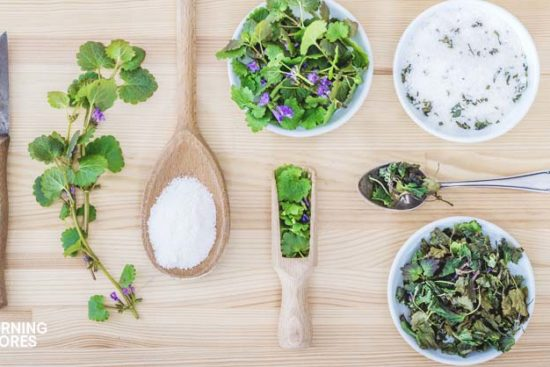 9 Ways to Preserve Your Herbs and Use Them All Year Long