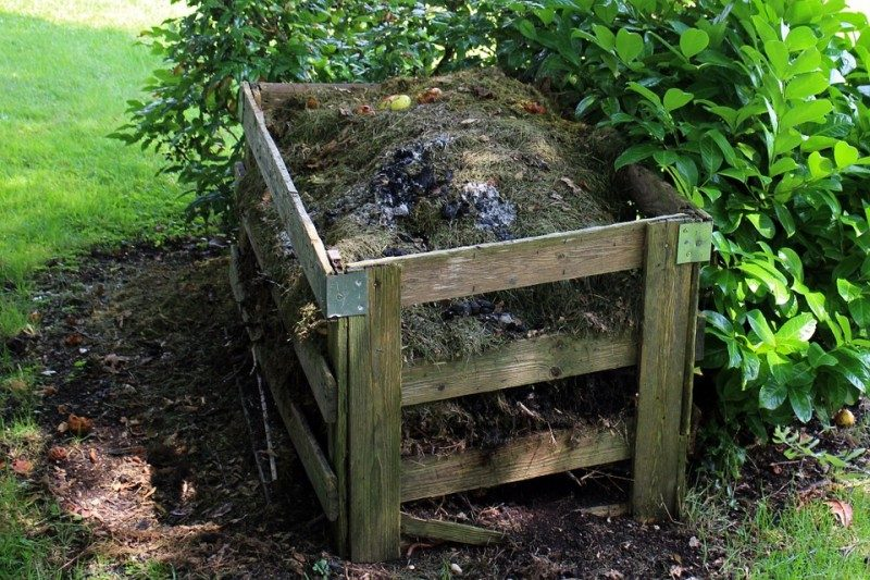 a compost bin, where one can compost dog poop