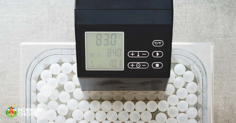 what is the best sous vide machine