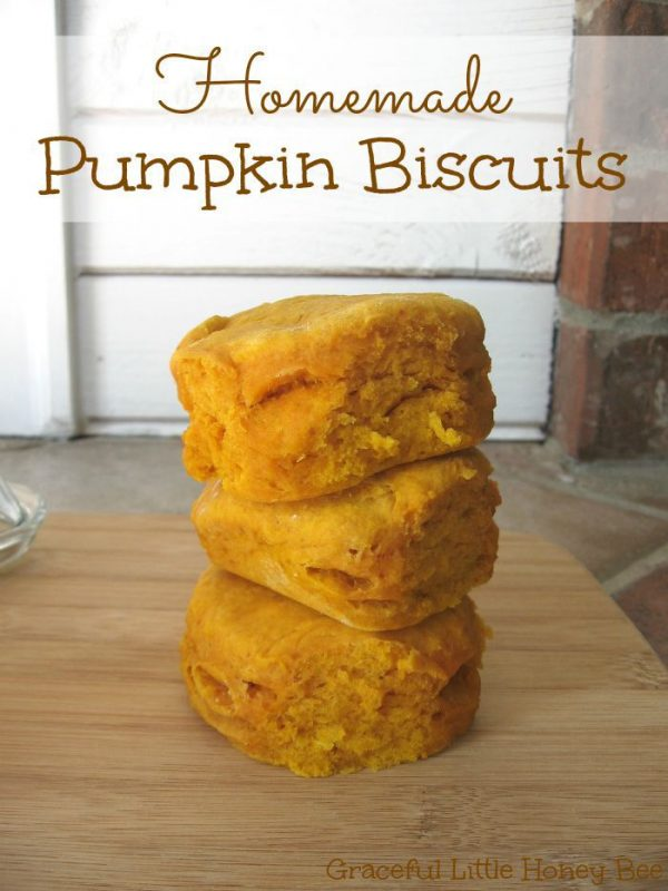 Homemade-Pumpkin-Biscuits