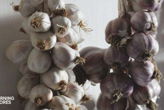 How to Store Garlic in 7 Ways (and 5 Delicious Recipes to Use It)