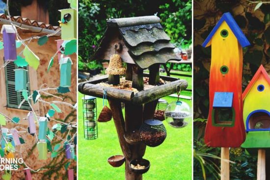 19 DIY Bird Feeders to Keep Your Colorful Feathered Friends Happy