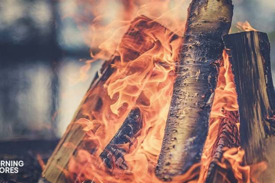 22 of the Best Firewood Choices You Can Burn This Winter