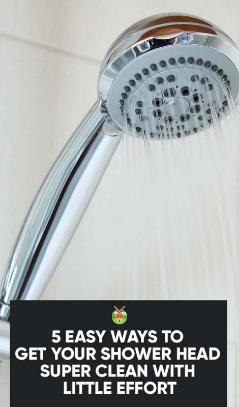 5 Easy Ways To Get Your Shower Head Super Clean With Little