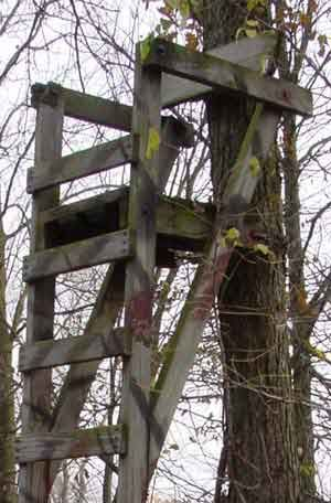 Tree Stand Designs Free : Free diy deer stand plans and ideas perfect for hunting season
