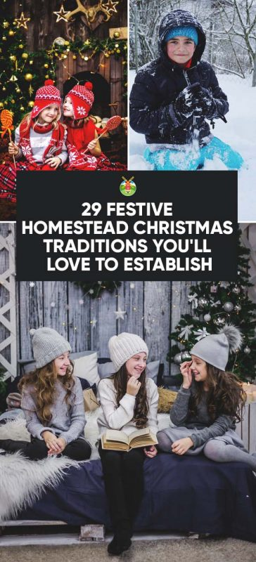 homestead christmas traditions