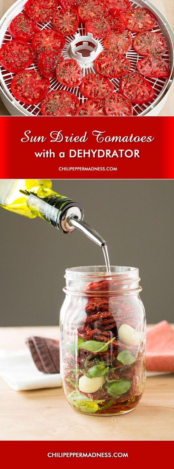 9 Perfectly Delicious Dehydrator Recipes You Will Want to Try