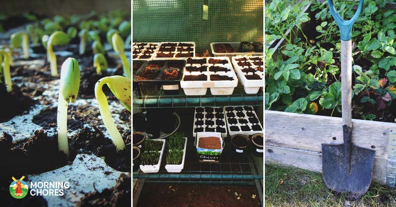 did you know that you can grow a garden virtually anywhere you live