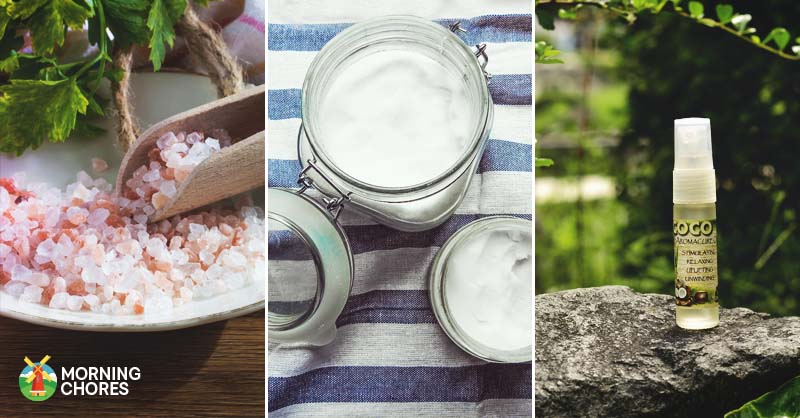 Natural Homemade Deodorant Recipes