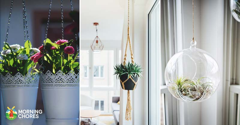 20 Charming DIY Indoor Hanging Planters to Display Your Greenery