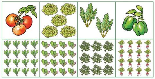 15. Small-Space Vegetable Garden