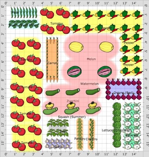 16. 15 x15 Veggie Garden