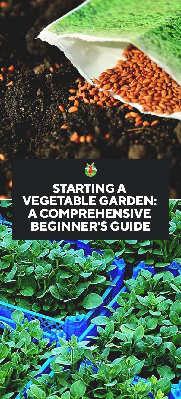 Starting A Vegetable Garden A Comprehensive Beginners Guide Pin