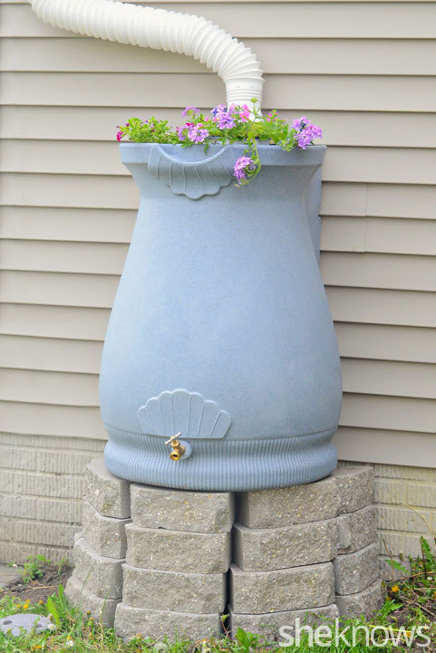 This Rain Barrel Is Perfect It S Beautiful To Look At Efficient And Functional I Love That They Have Planted Flowers On The Lid Make Even