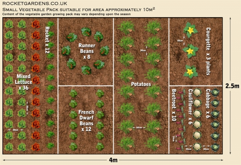 Vegetable Garden Idea The Great Small Garden Layout