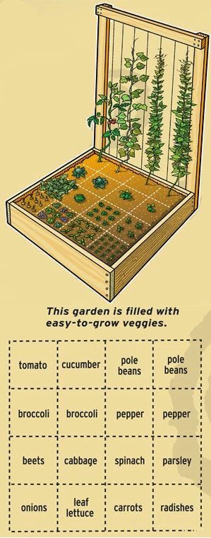 19 Vegetable Garden Plans & Layout Ideas That Will Inspire You on raised garage plans, doctors office plans, wagon wooden model plans, raised beds from logs, raised planter plans, raised flower box plans, raised beds on a budget, greenhouse plans, cold frame plans, raised vegetable beds, window box plans, raised ranch plans, raised planter beds, raised deck plans, raised beds on a slope, raised sandbox plans, raised beds with tin, shed plans, raised house plans, raised playhouse plans,