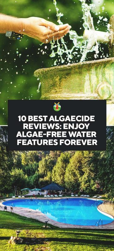 10 Best Algaecide Reviews Enjoy Algae Free Water Features