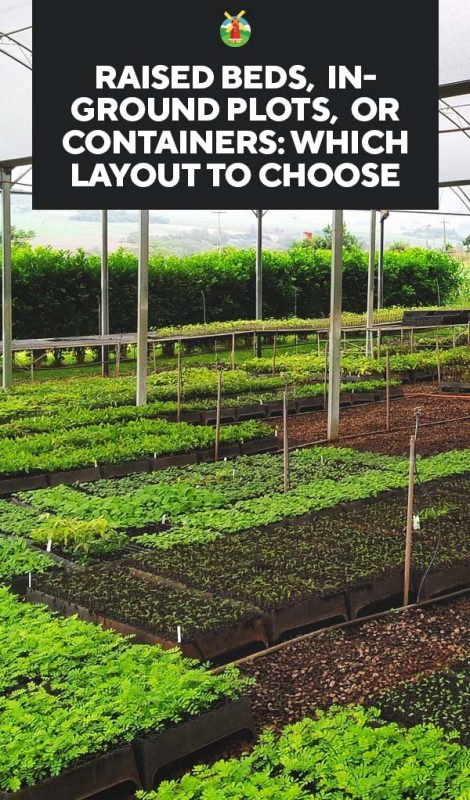 Raised Beds In Ground Plots Or Containers Which Garden