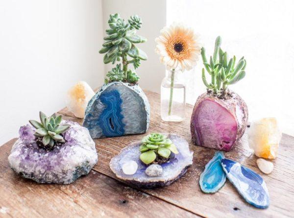 succulent crystal garden