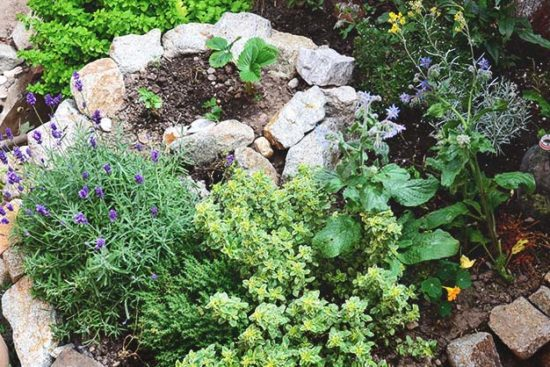 How to Build a Herb Spiral in Your Garden (and Why You Should)