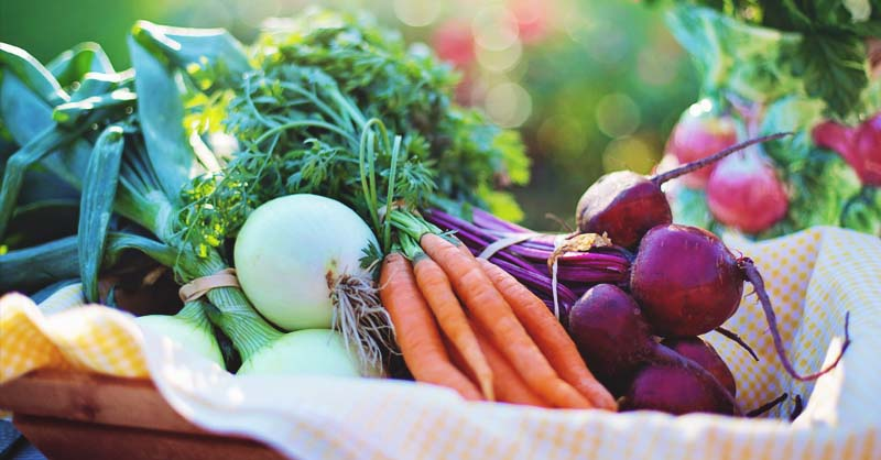 Vegetable Garden Size Calculator How Much To Plant For Your Family