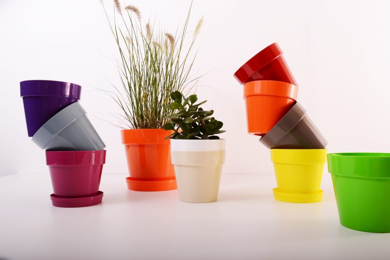 Plastic plant containers