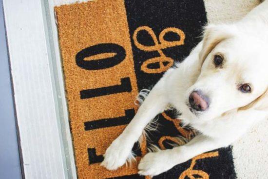 32 Impressive Yet Inexpensive DIY Doormats You'll Love