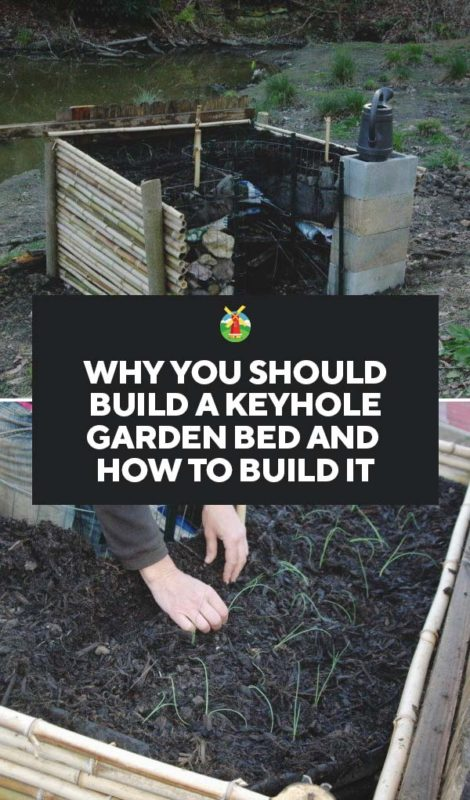 Keyhole Garden: Why You Should Build A Keyhole Bed And How
