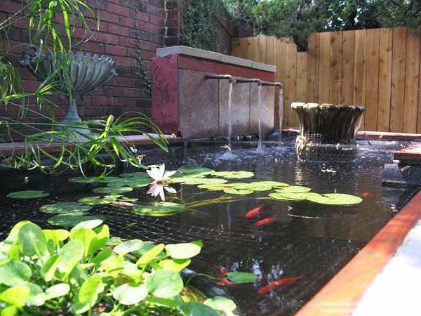 100 Backyard Pond Ideas To Inspire Your Garden Transformation
