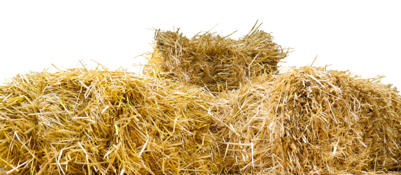 straw bale for core gardening