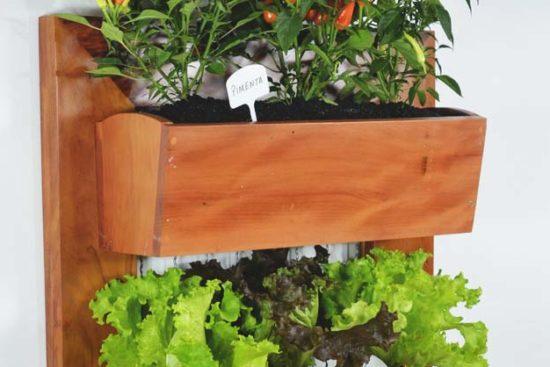 54 Stunning Outdoor & Indoor Vertical Garden Ideas to Brighten Up Any Space